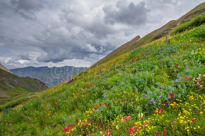 Stoney Pass, Image #7126
