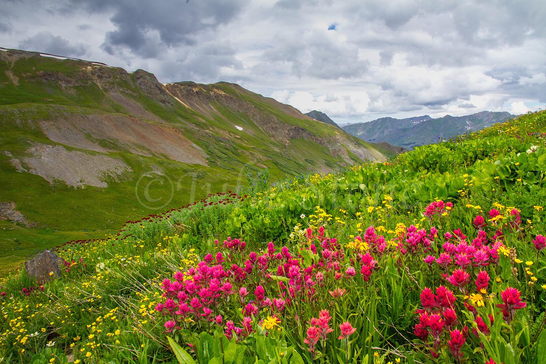 Stoney Pass, Image #6963