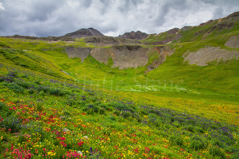 Stoney Pass, Image #7312