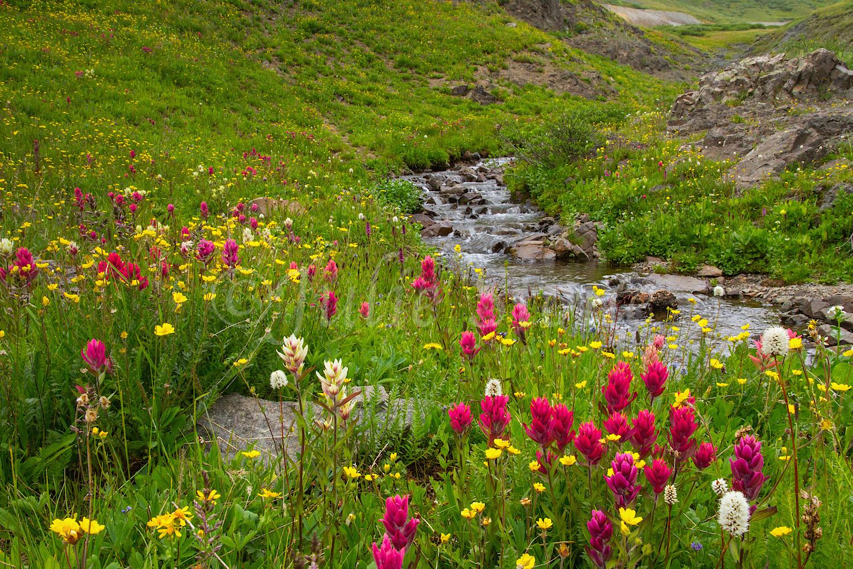 Stoney Pass, Image #7485