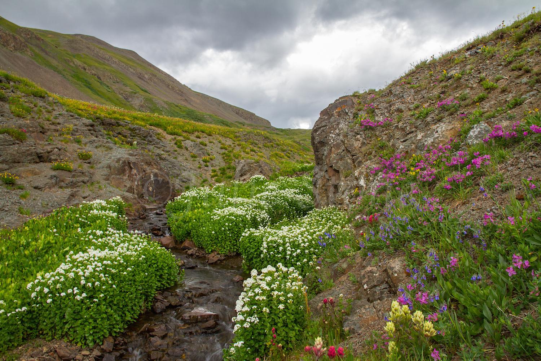 Stoney Pass, Image #7553
