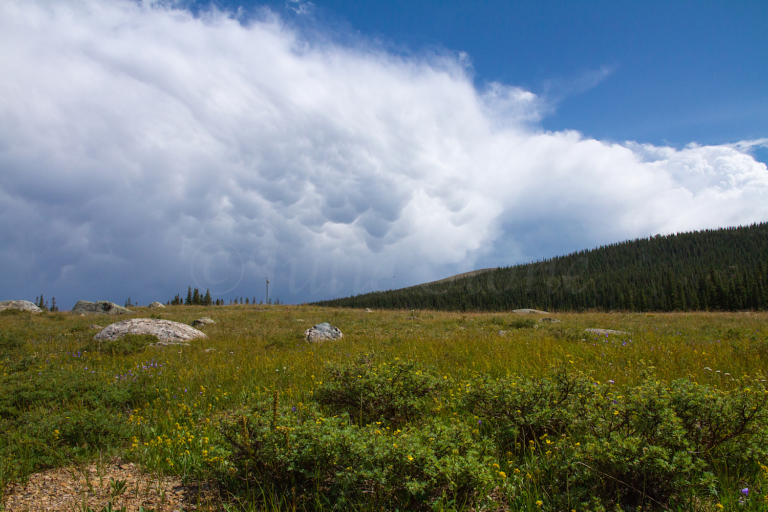 Storm approaching Brainard Lake, Image #4138
