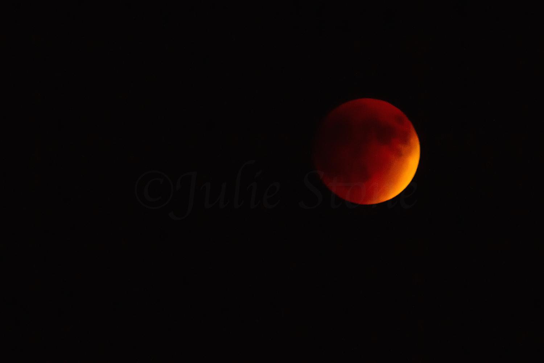 Lunar Eclipse, Image #3136