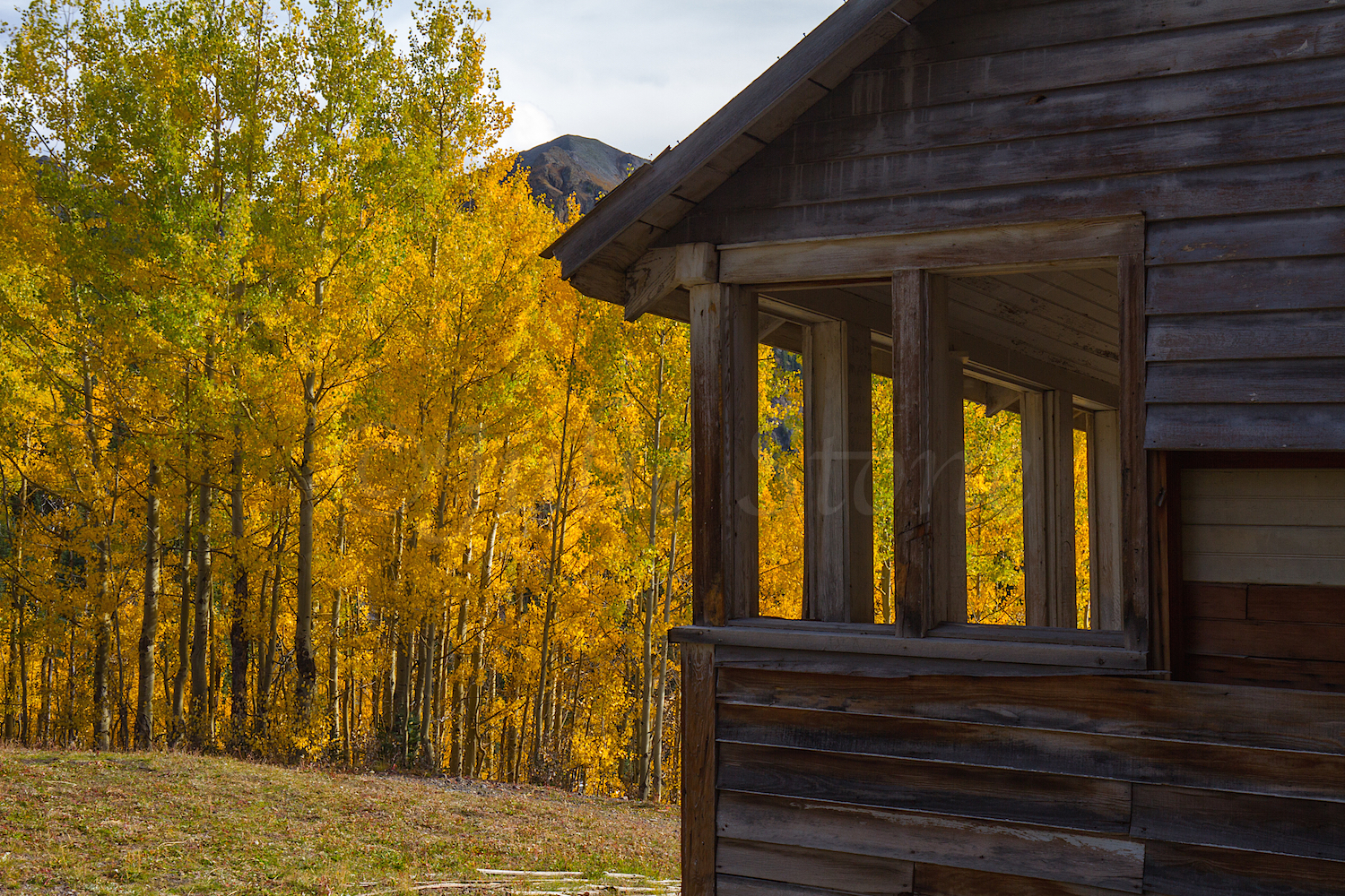 Alta Ghost Town, Image #3530