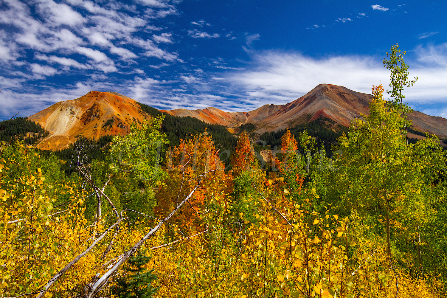 Red Mountain Fall Color, Image #