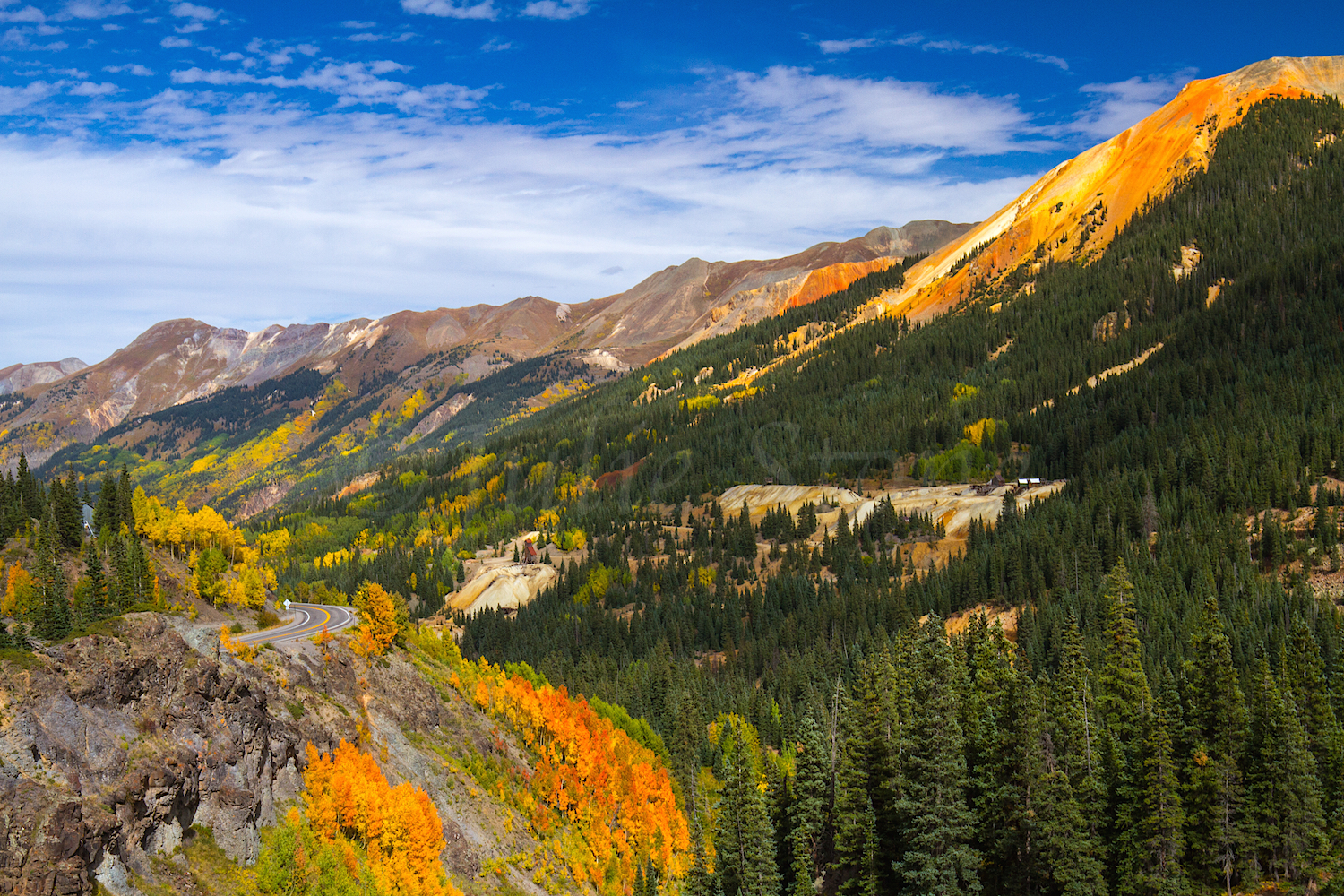 Red Mountain Fall Color, Image #0189