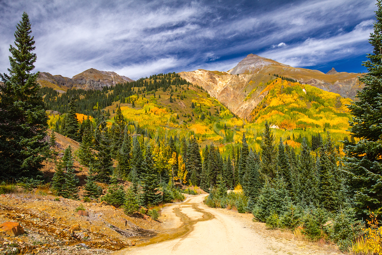 Red Mountain Fall Color, Image #9113