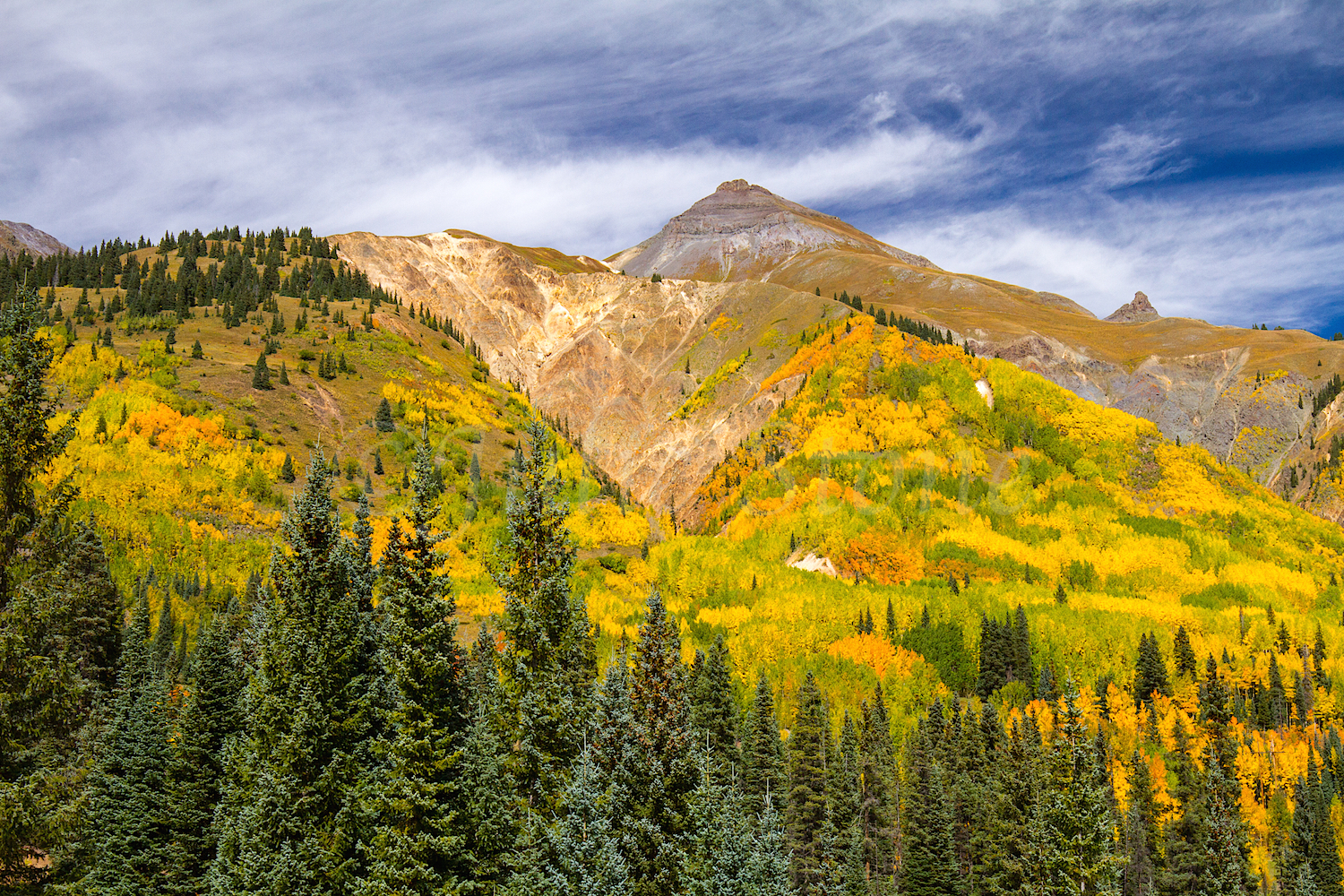 Red Mountain Fall Color, Image #9138