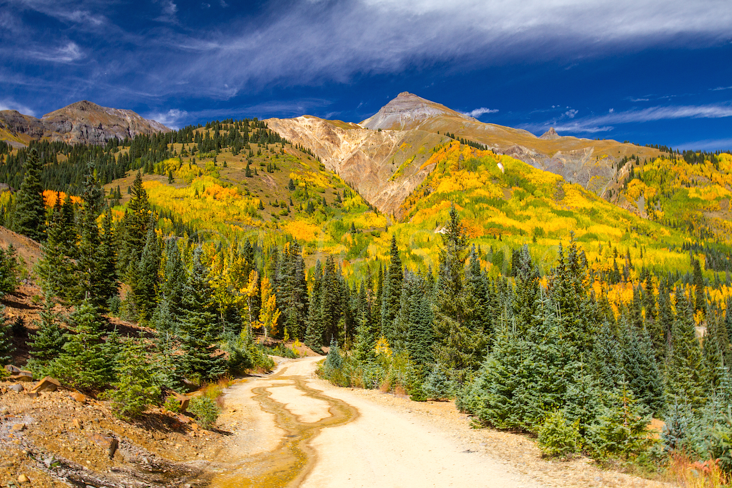 Red Mountain Fall Color, Image #9504