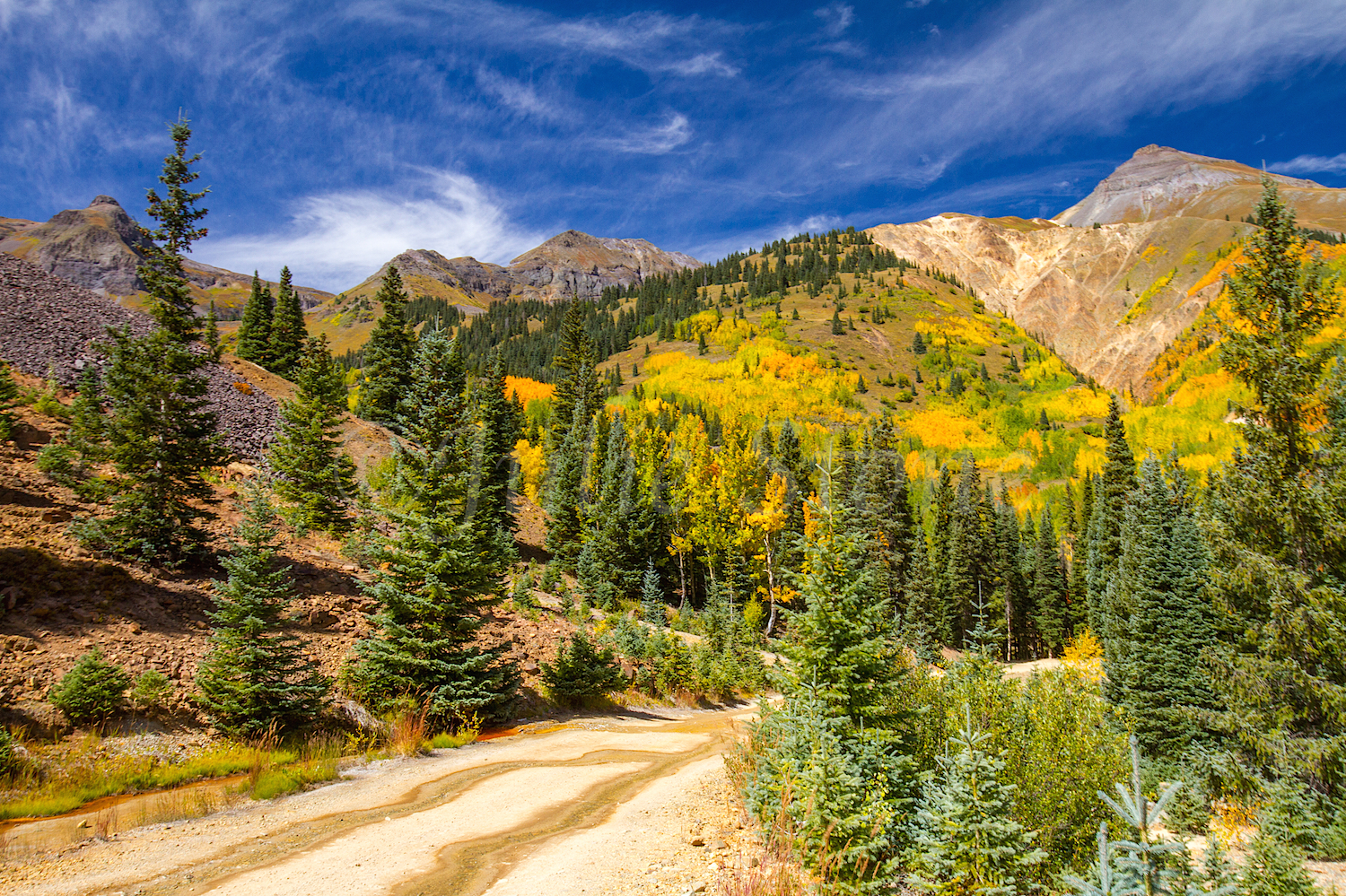 Red Mountain Fall Color, Image #9516