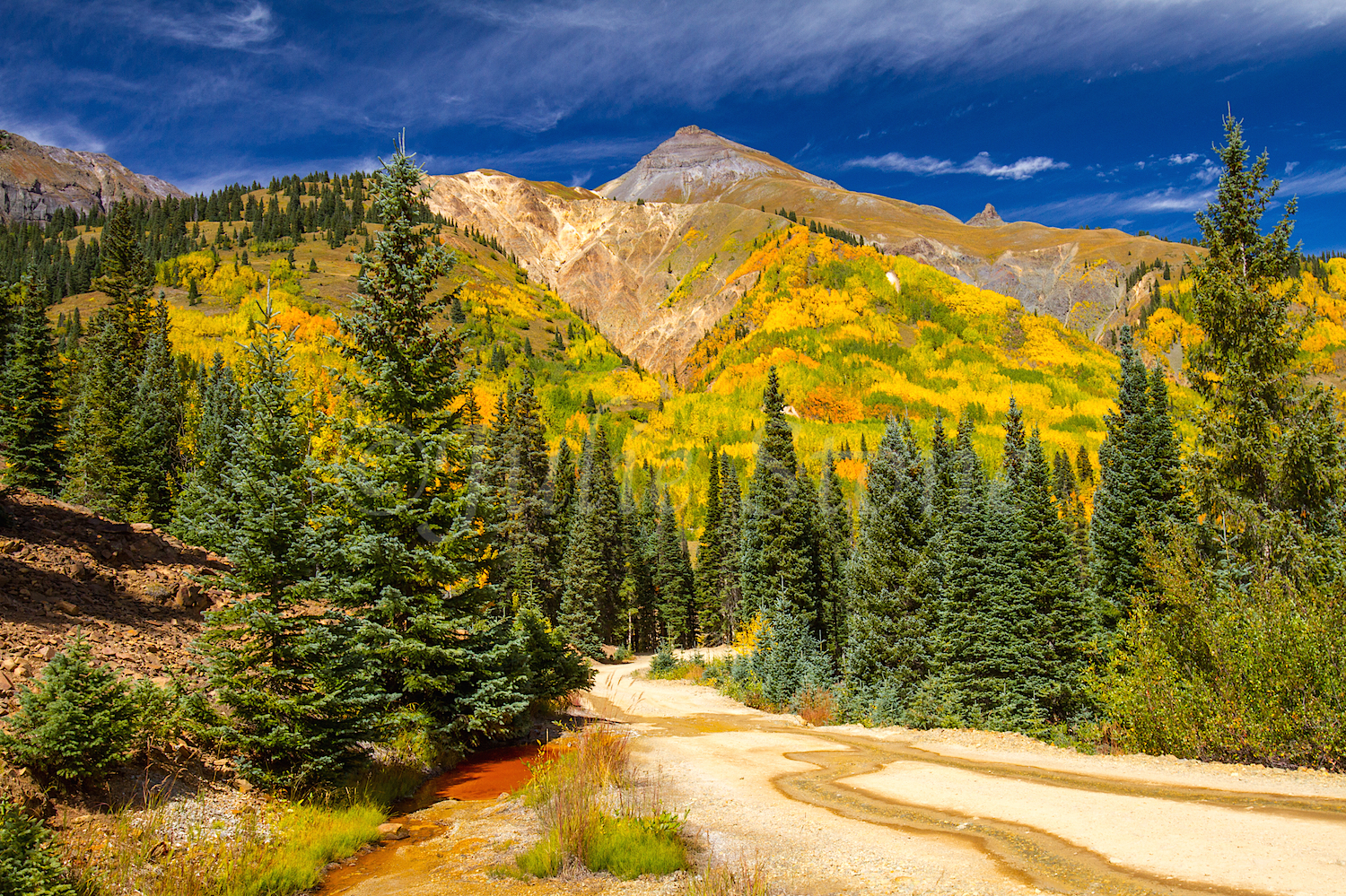 Red Mountain Fall Color, Image #9525