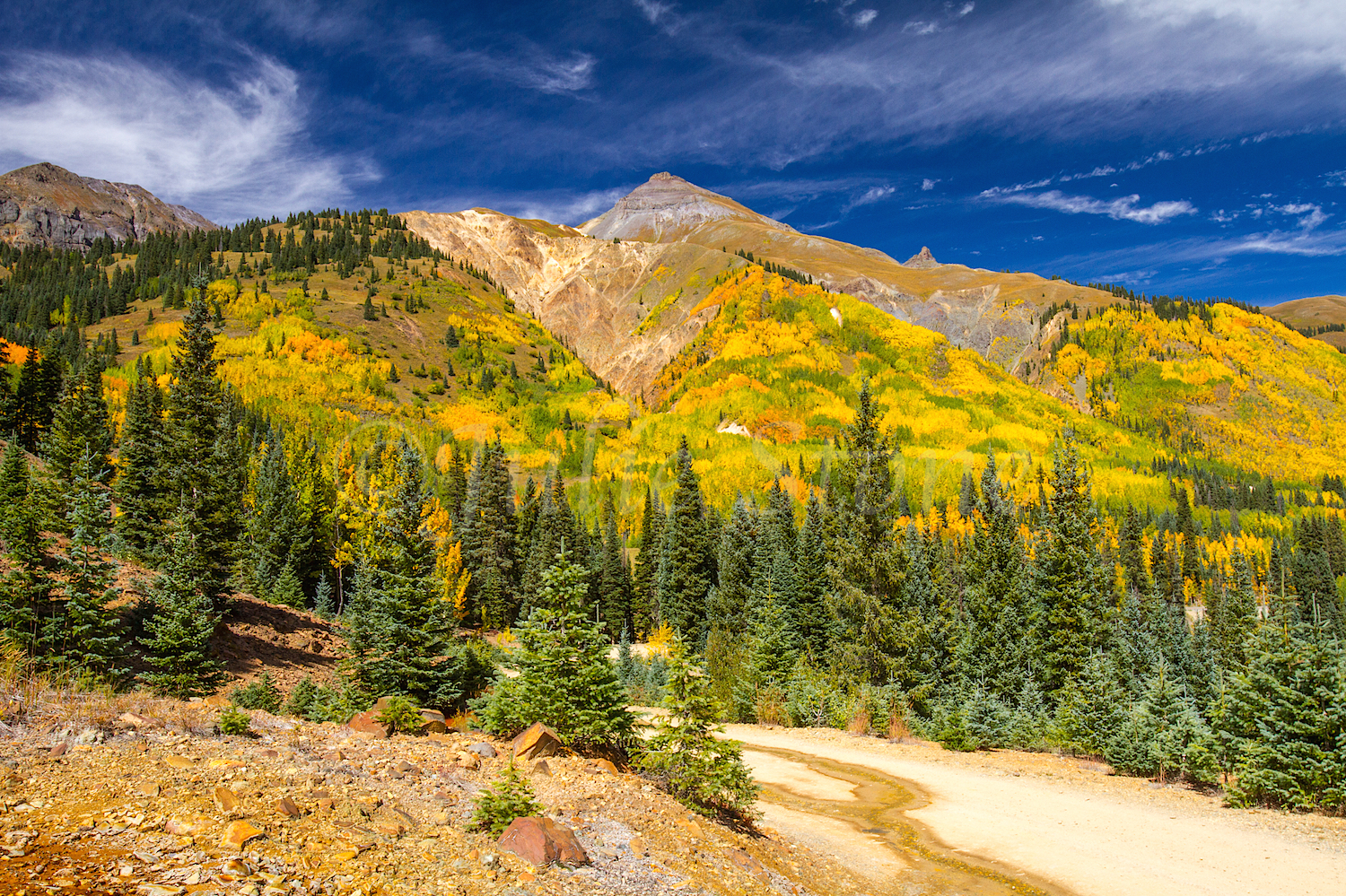 Red Mountain Fall Color, Image #9551