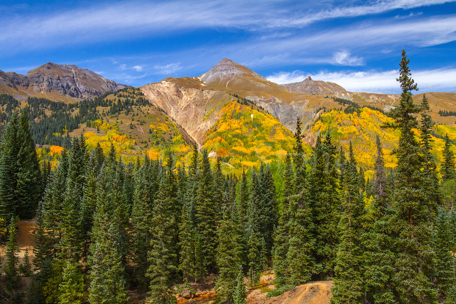 Red Mountain Fall Color, Image #9678