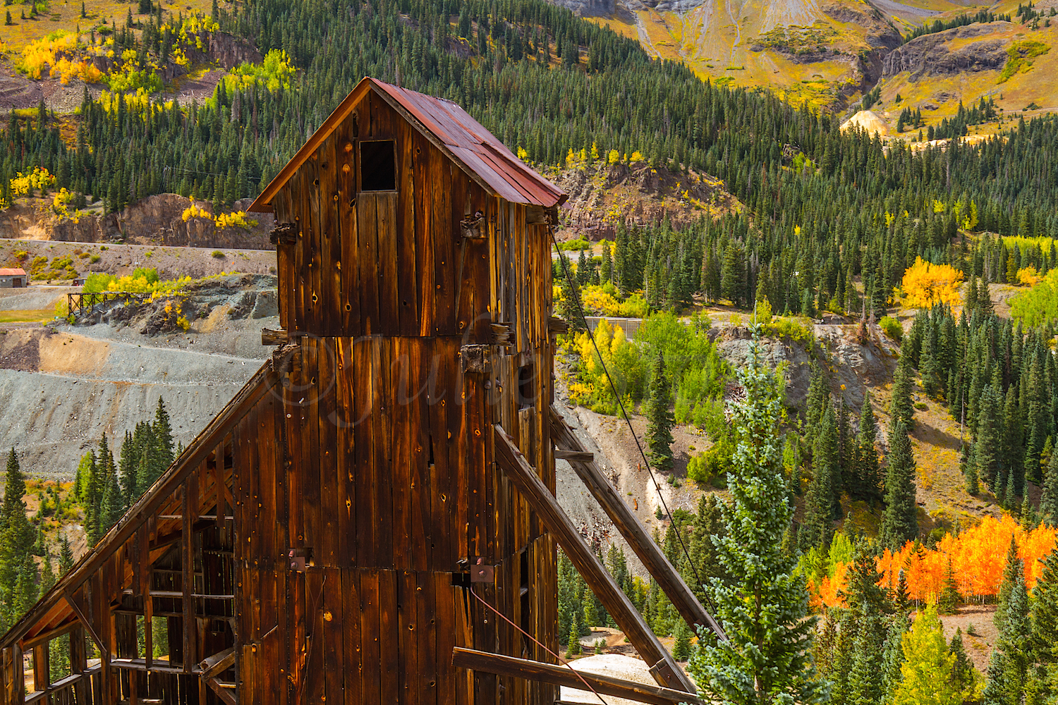 Red Mountain Fall Color, Image #9802
