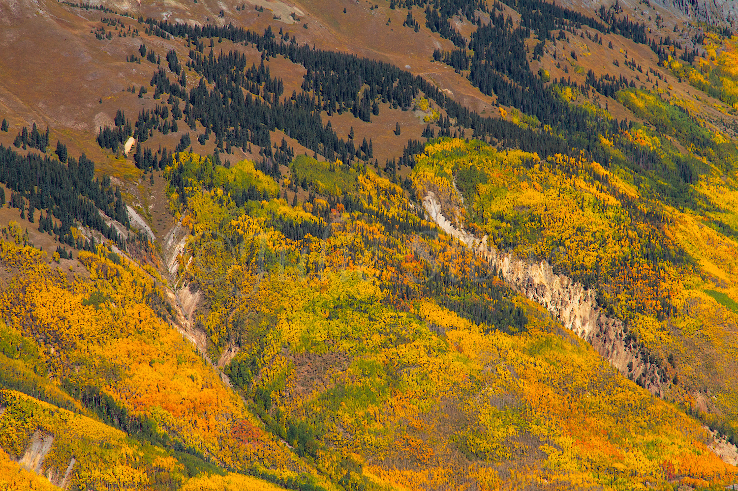 Red Mountain #3, Image #1124