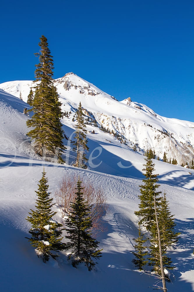Red Mountain Pass, Image #1682