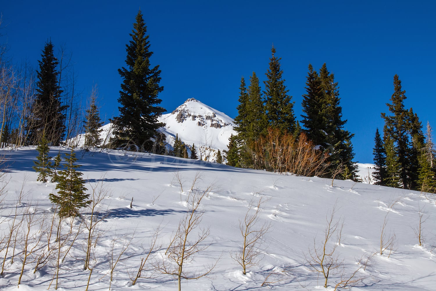 Red Mountain Pass, Image #1668