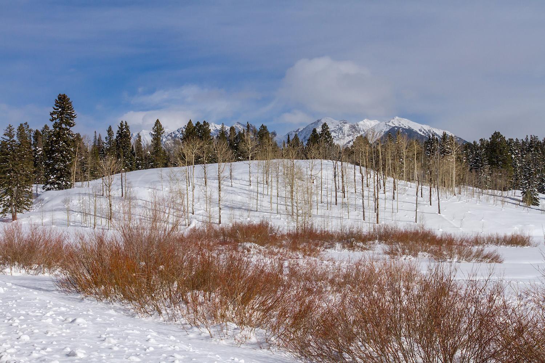 Needles Mountain, Image #9239