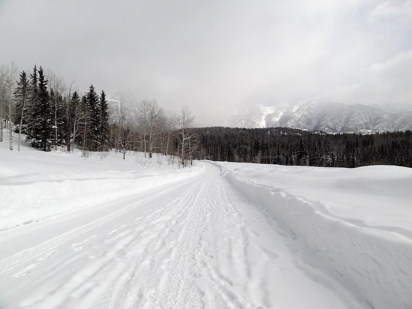 Lime Creek Road Snowshoe, Image #5195