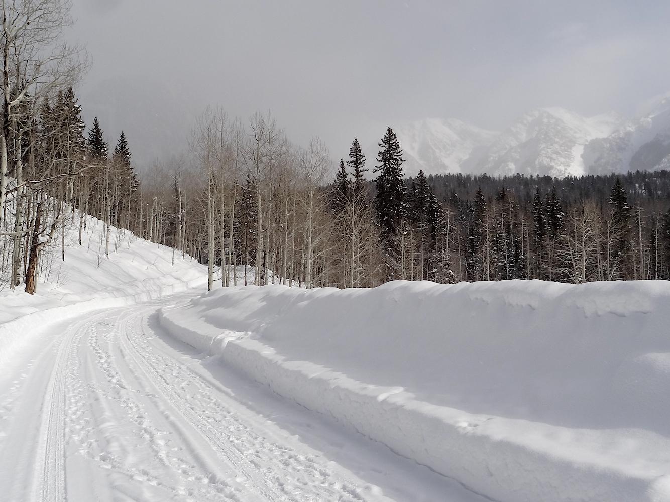 Lime Creek Road Snowshoe, Image #5204