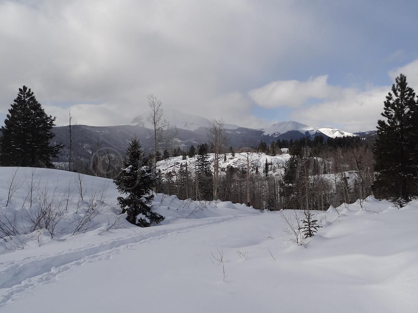 Lime Creek Road Snowshoe, Image #5299