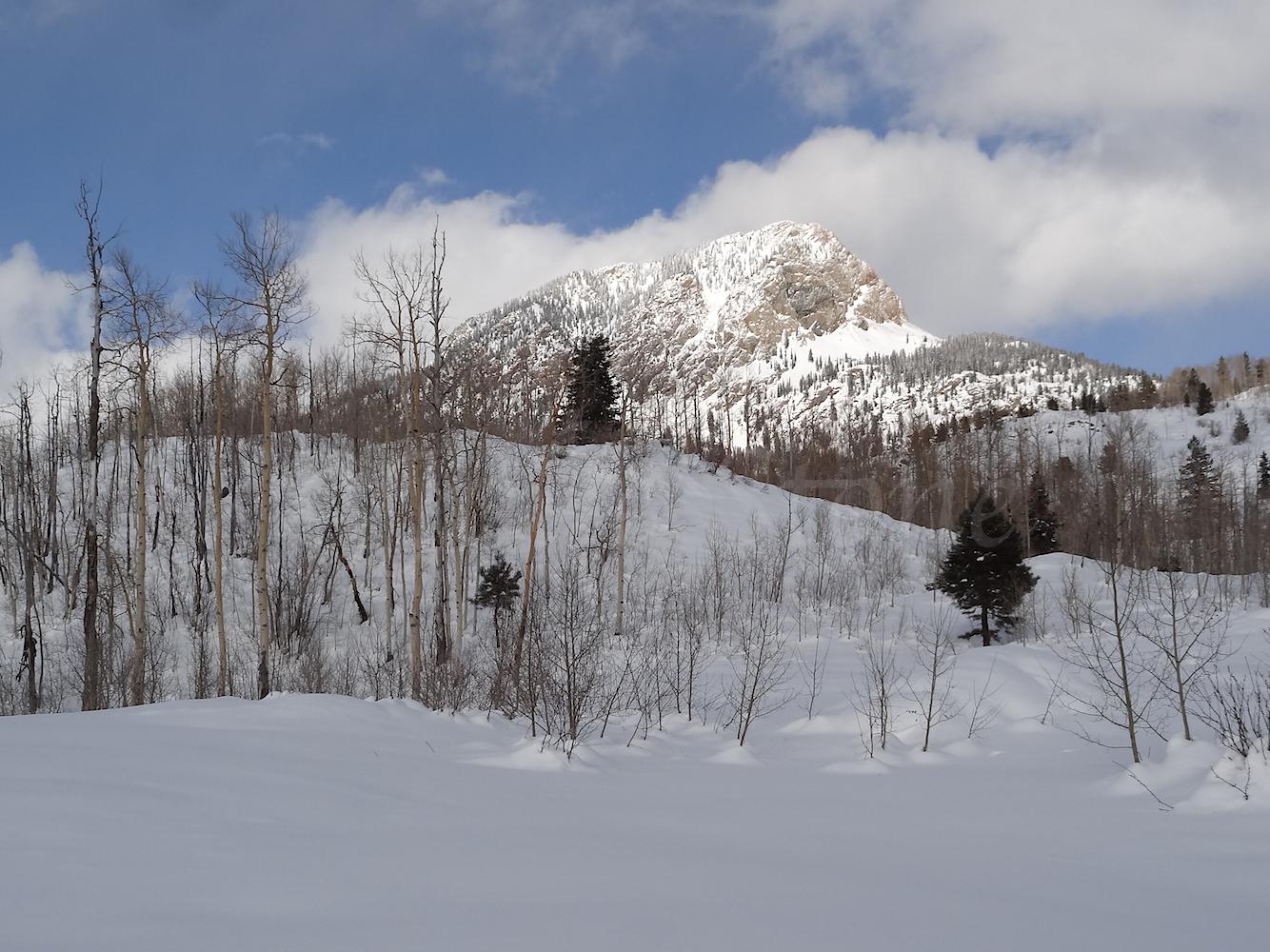 Lime Creek Road Snowshoe, Image #5311