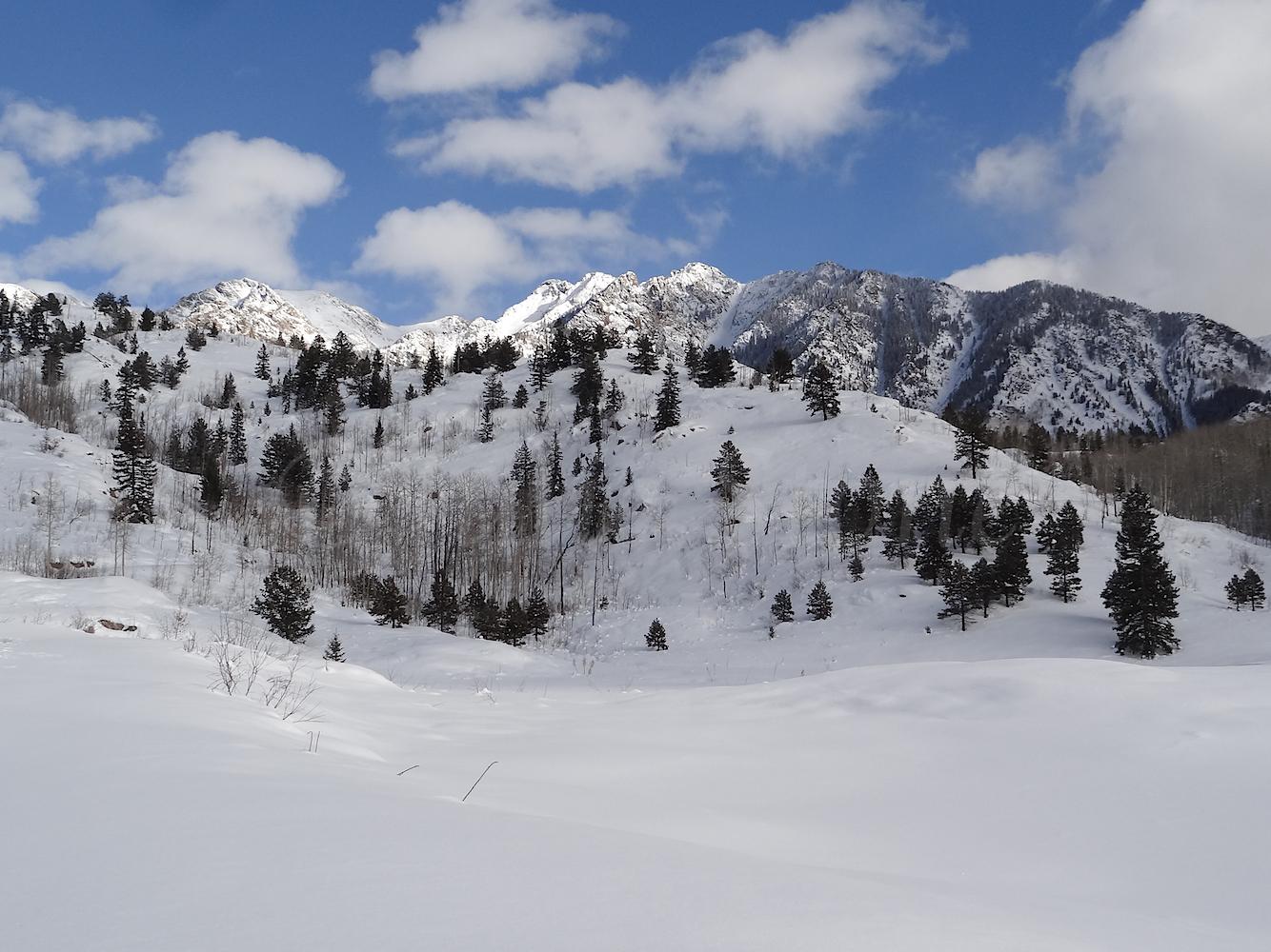 Lime Creek Road Snowshoe, Image #5336
