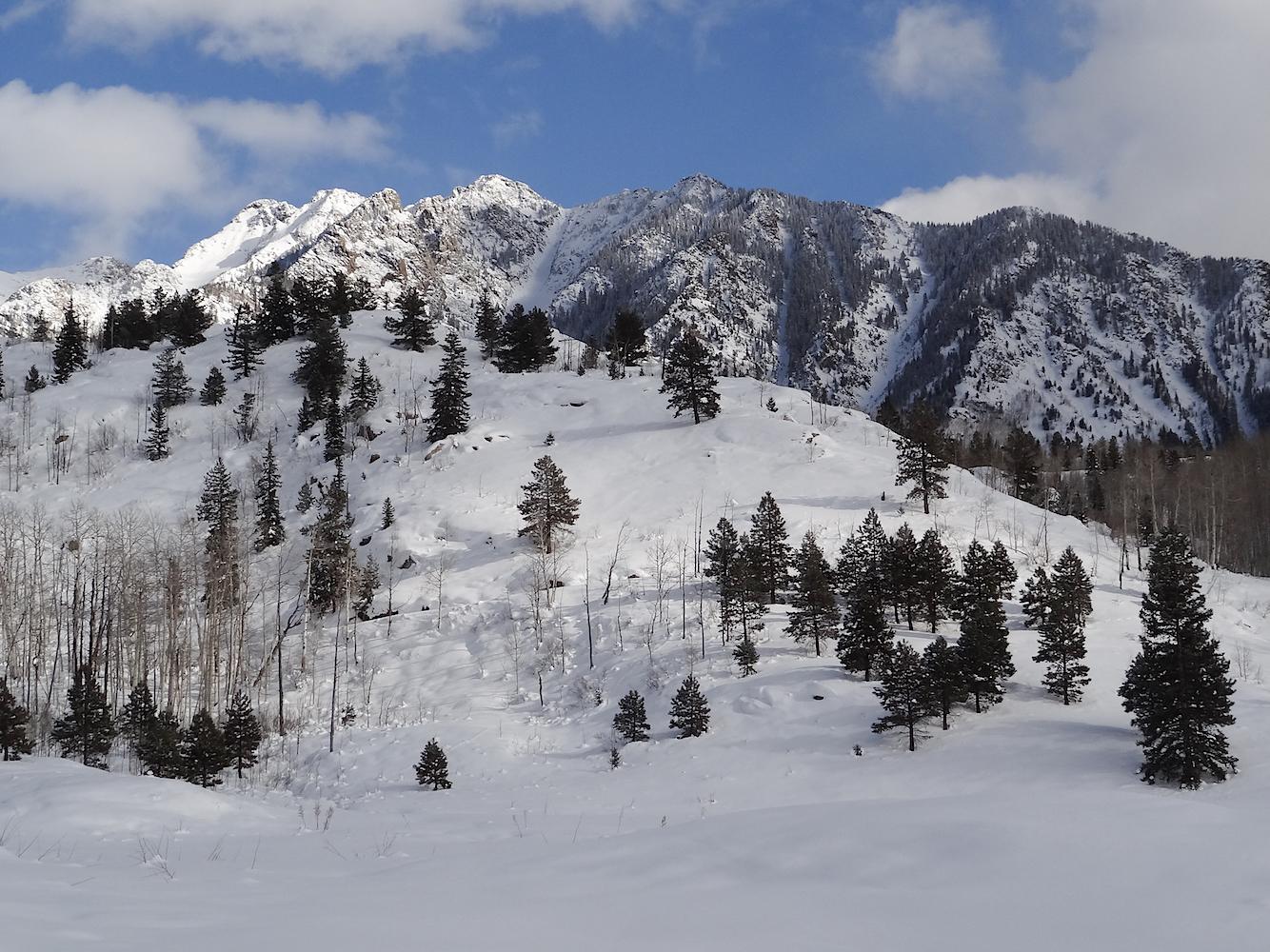 Lime Creek Road Snowshoe, Image #5342