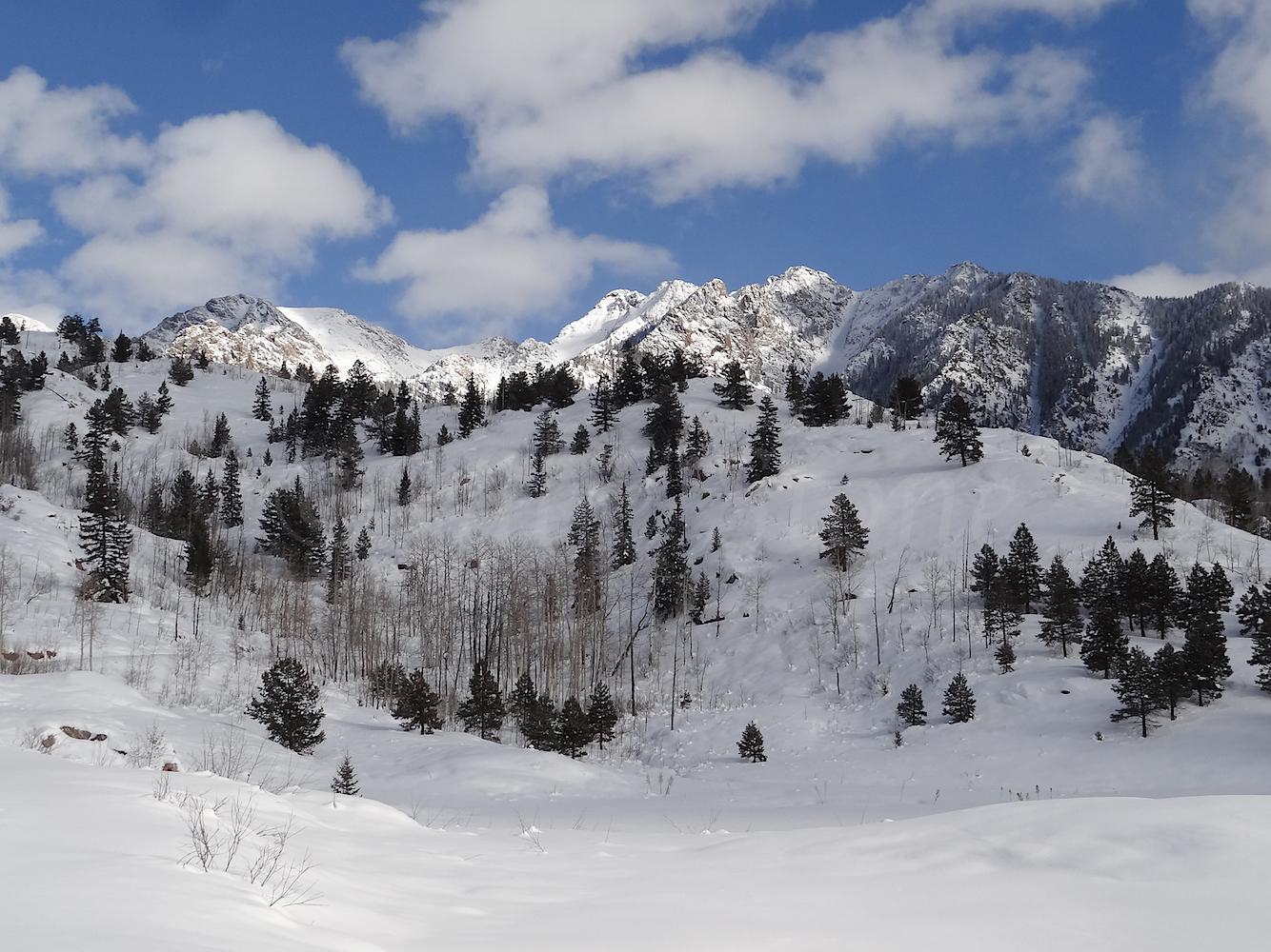 Lime Creek Road Snowshoe, Image #5353