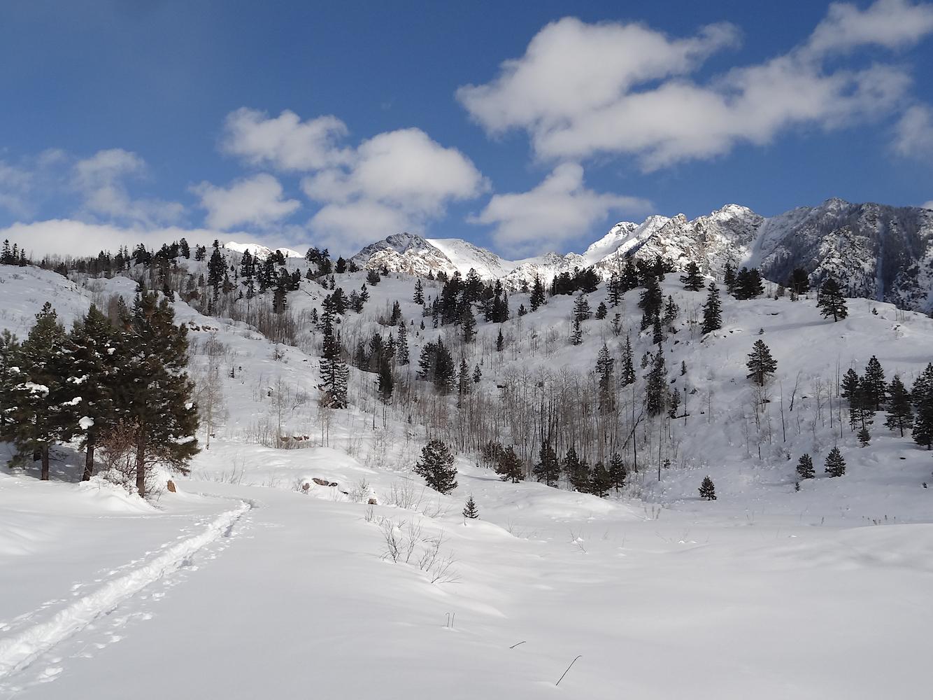 Lime Creek Road Snowshoe, Image #5356