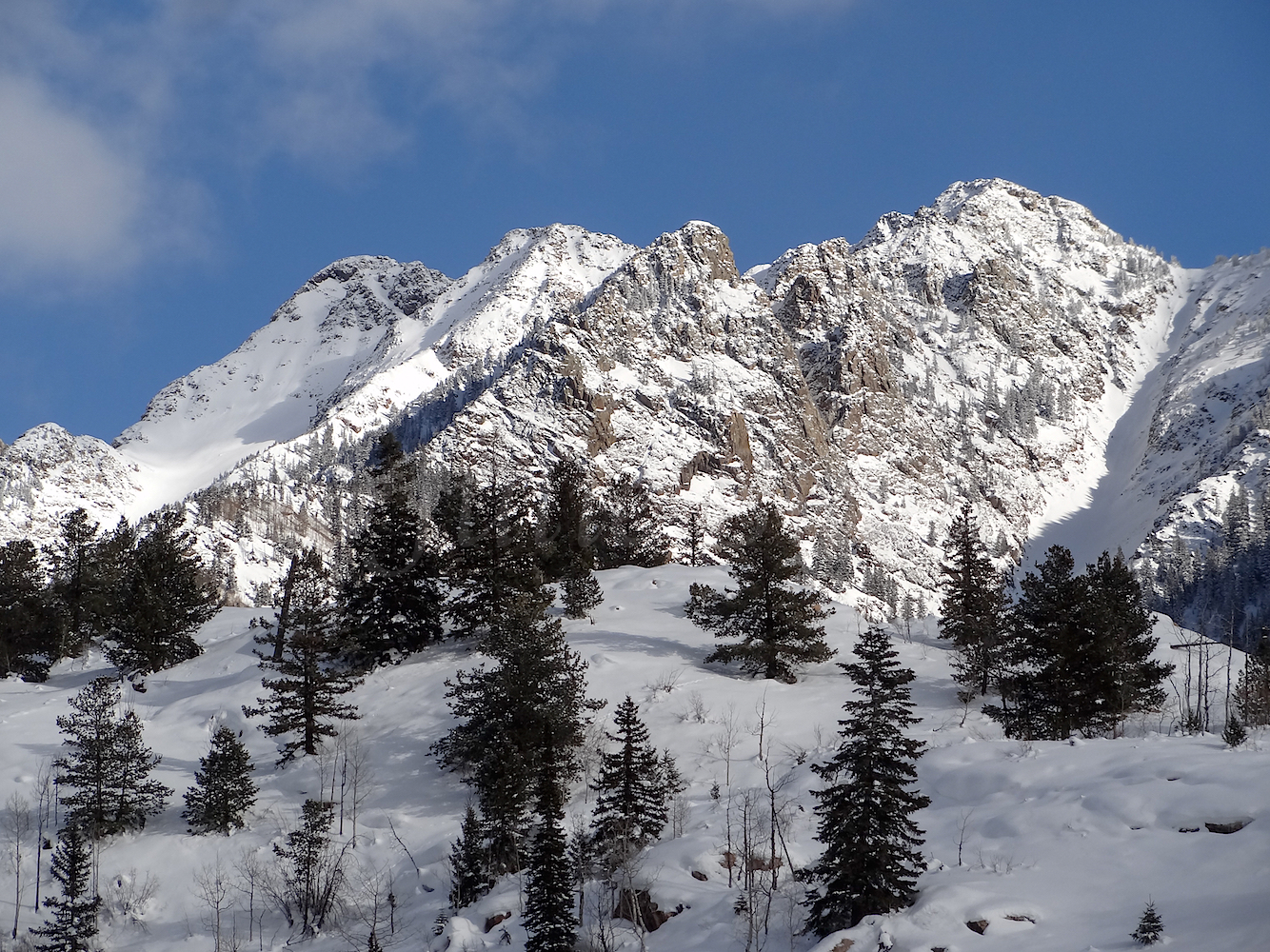 Lime Creek Road Snowshoe, Image #5384