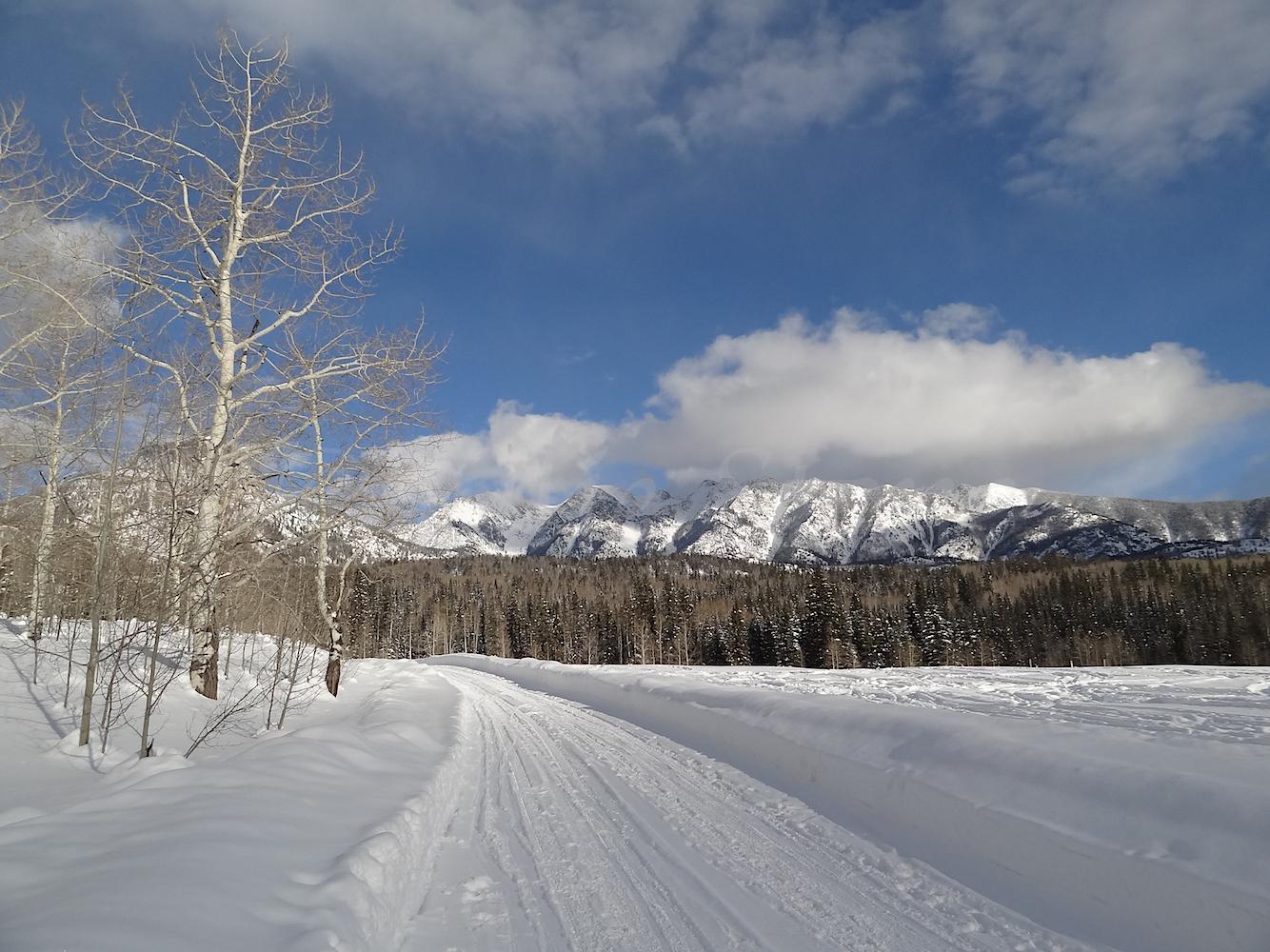 Lime Creek Road Snowshoe, Image #5459