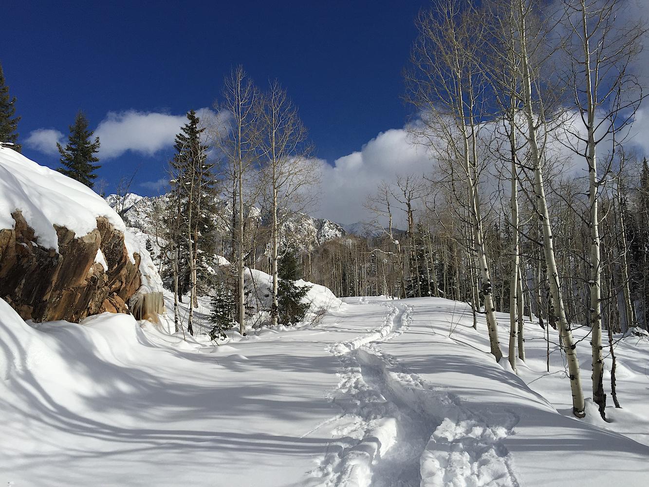 Lime Creek Snowshoe, Image #7008
