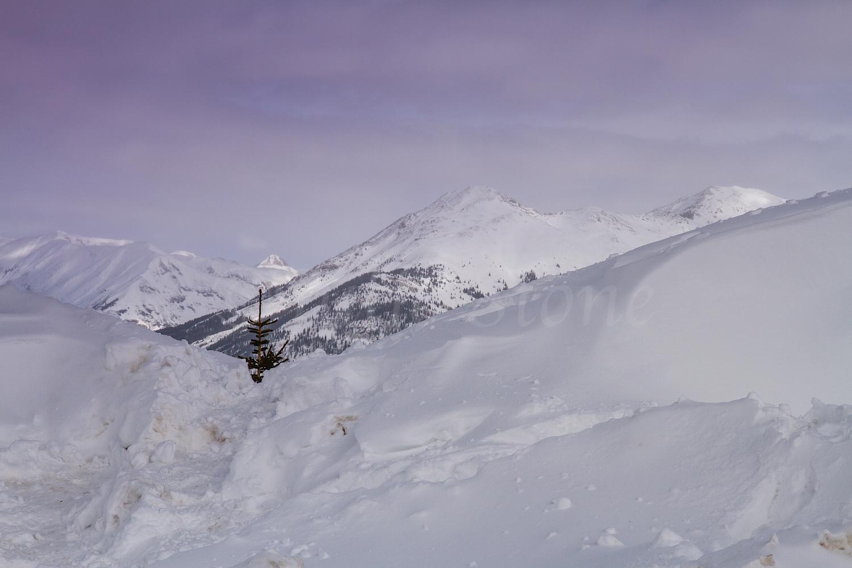 Molas Pass, Image #9051