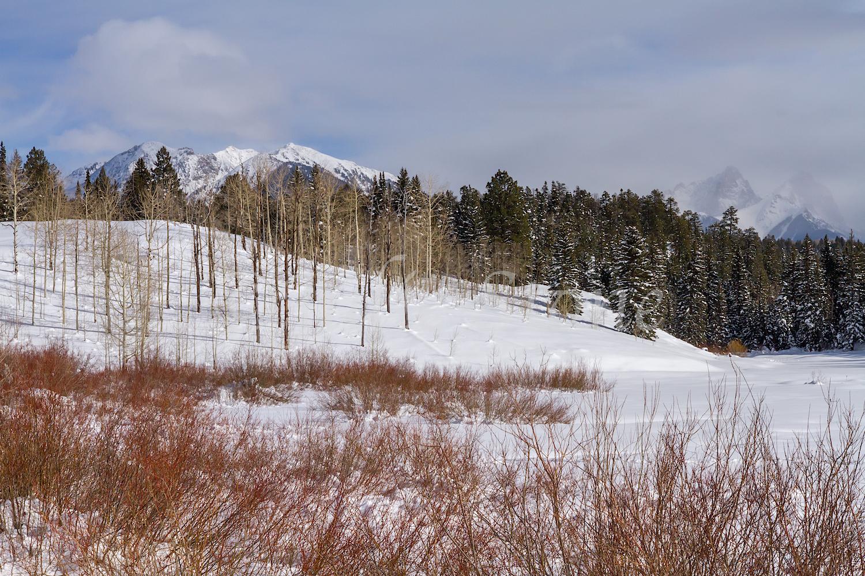 Needles Mountains, Image #9236