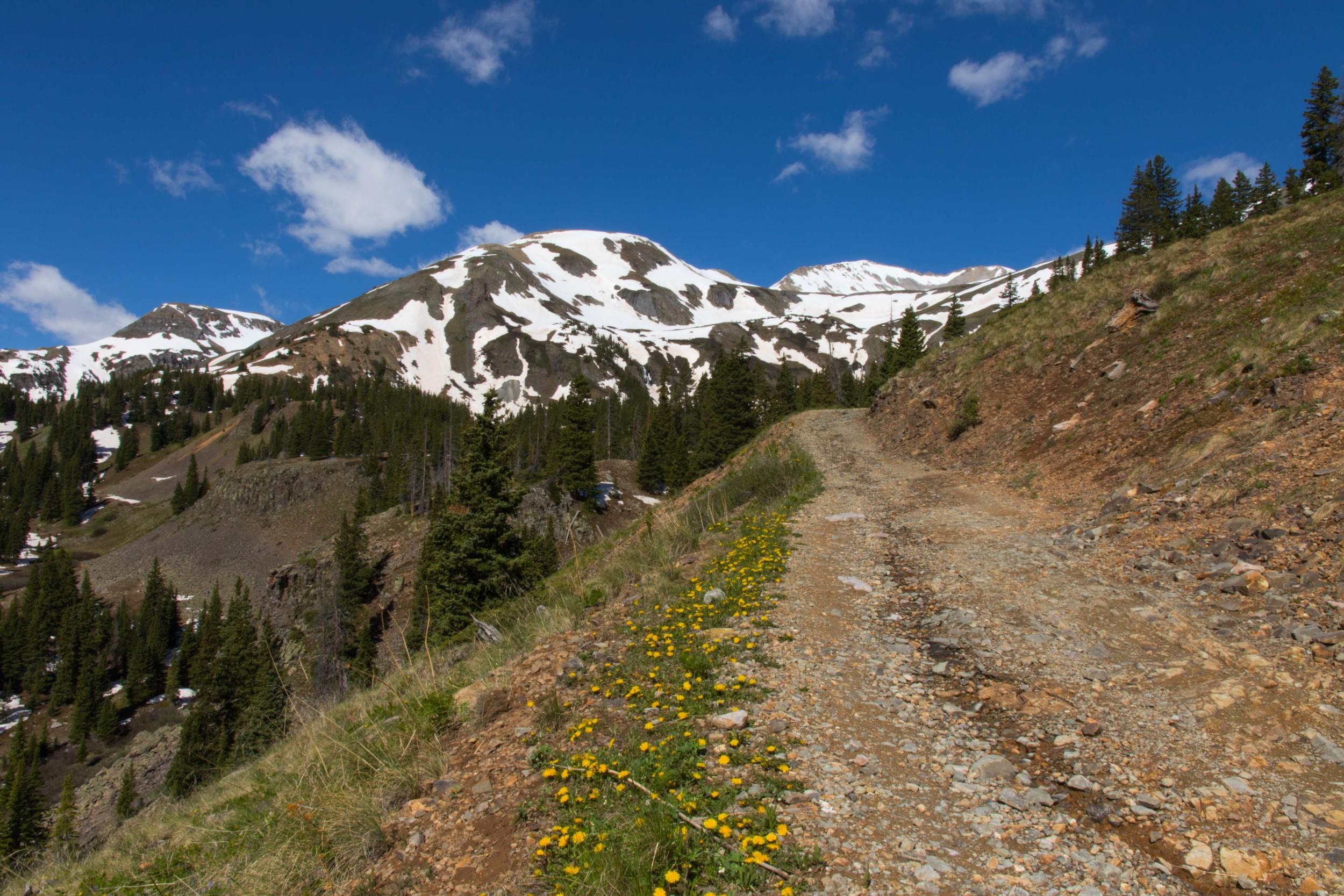 Black Bear Road, Image # JS2_0239