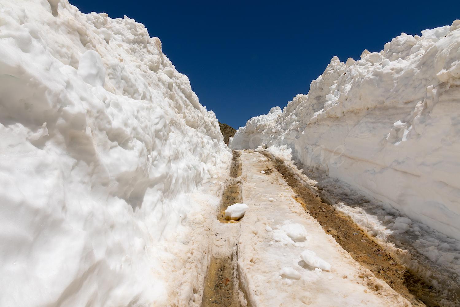 Ophir Road, Image #3056