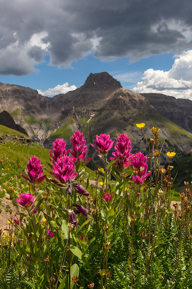 Governors Basin, Image #JS2_4378
