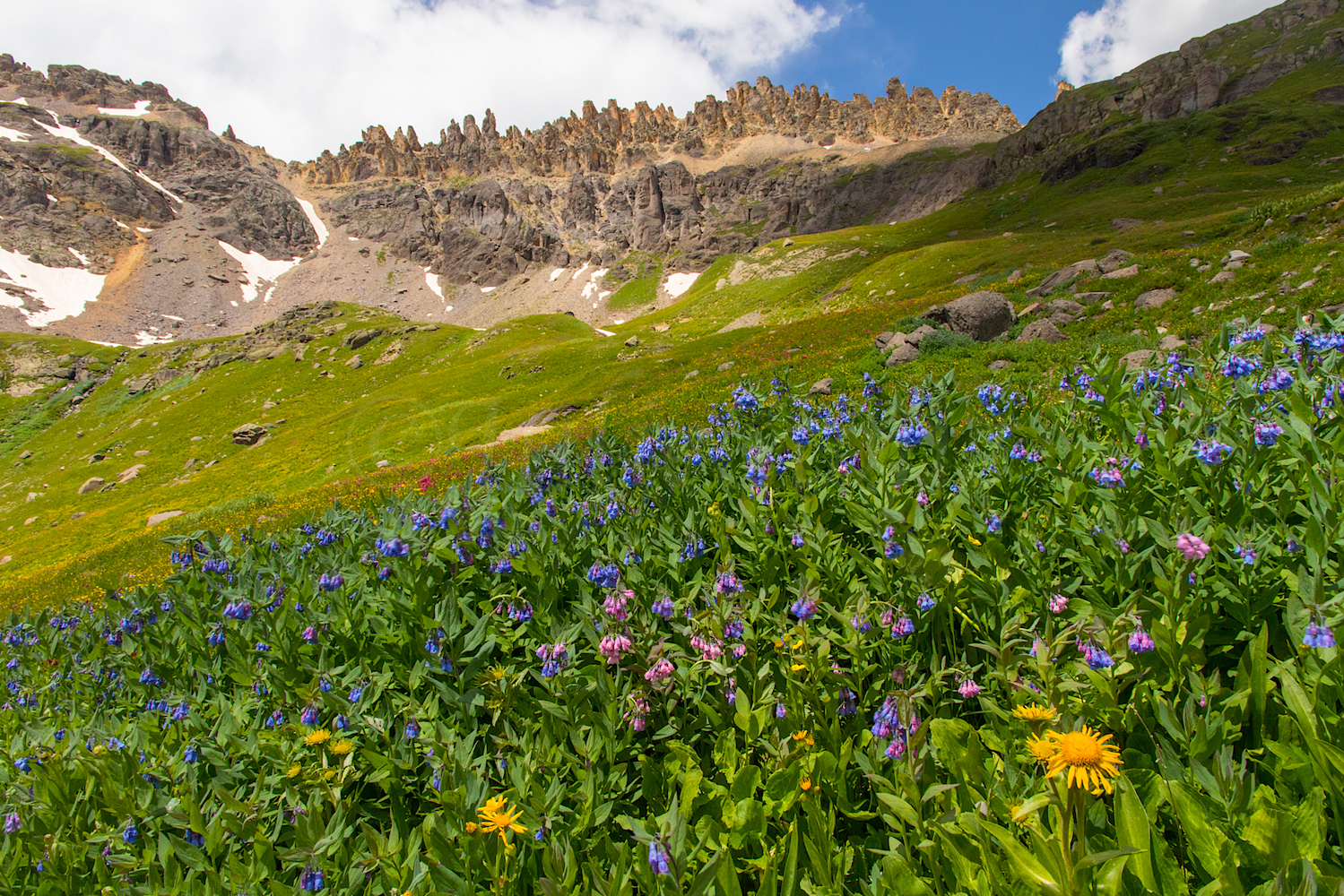 Governors Basin, Image #JS2_4480