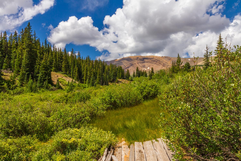 Horseshoe Mountain, Image # 2563
