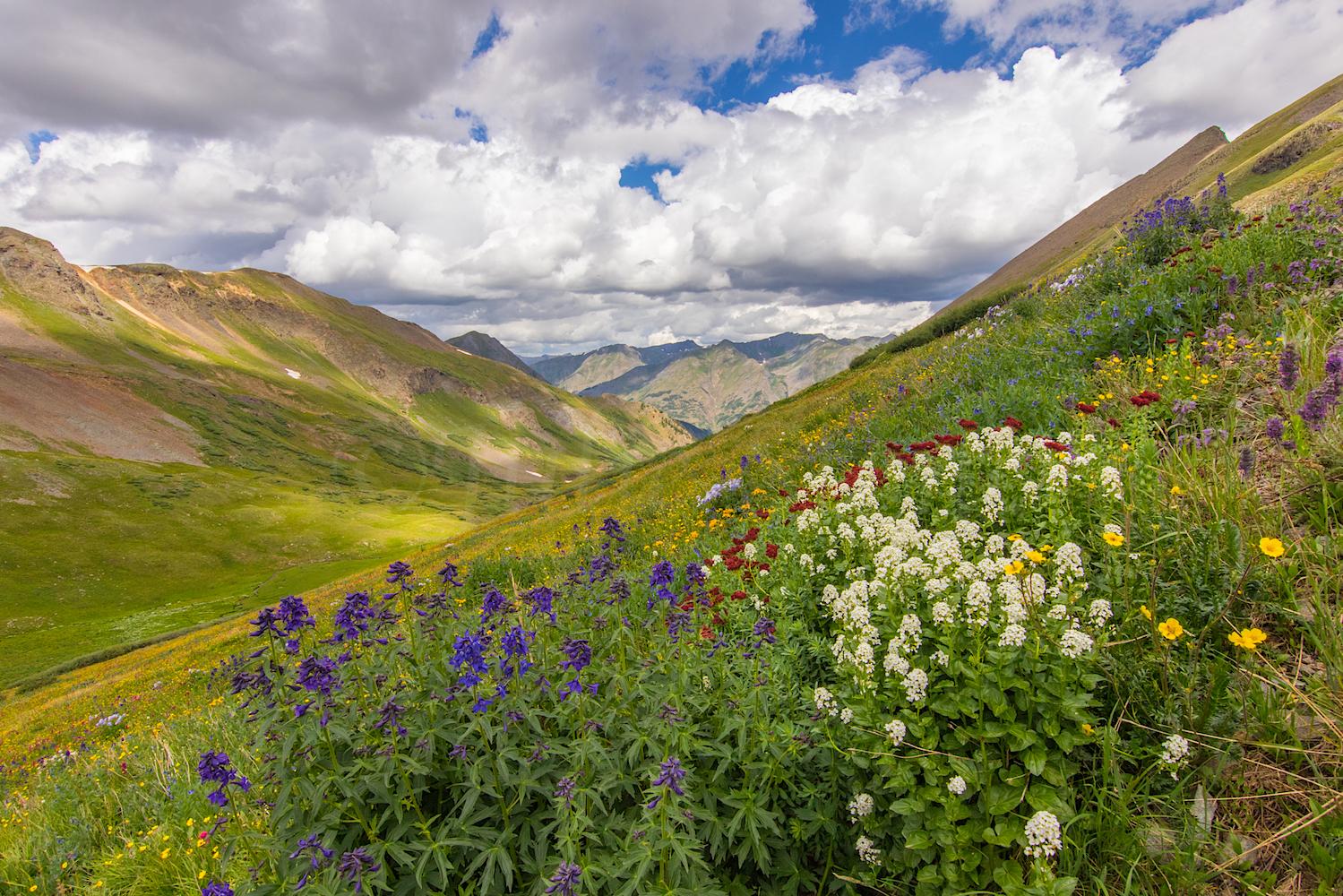 Stoney Pass, Image # JS2_0817