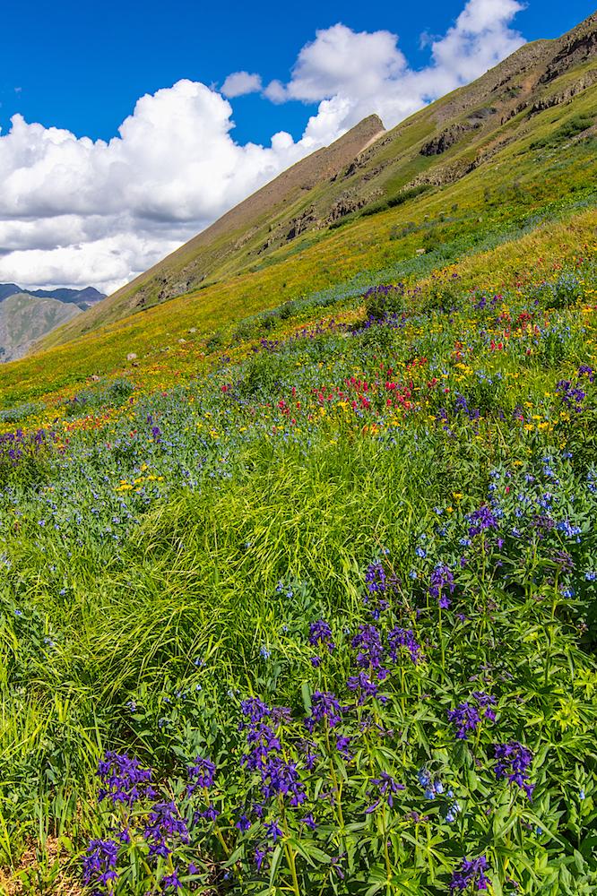 Stoney Pass, Image # JS2_0596