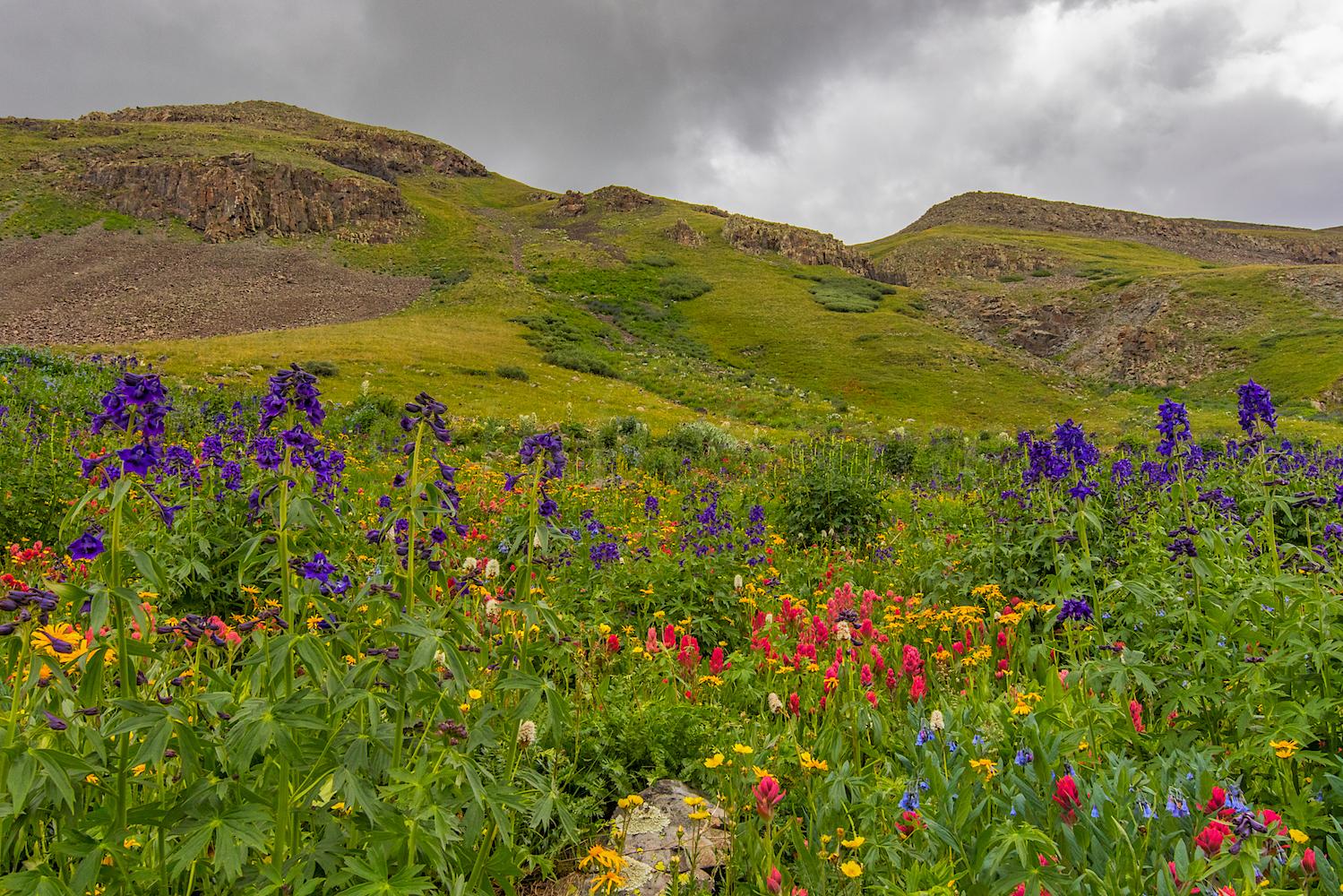 Stoney Pass, Image # JS2_1185