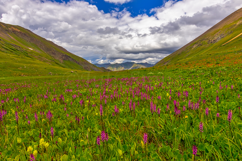 Stoney Pass, Image # JS2_1369