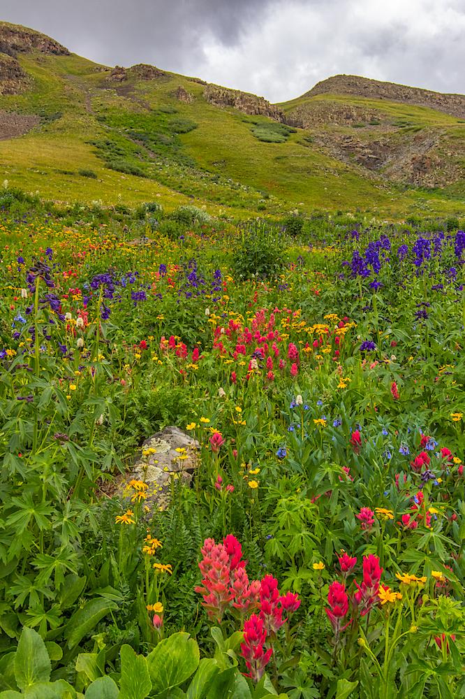 Stoney Pass, Image # JS2_1182