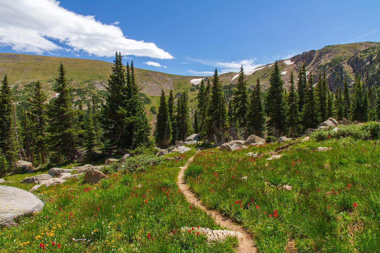 King, Betty & Bob Trail, Image # 0563