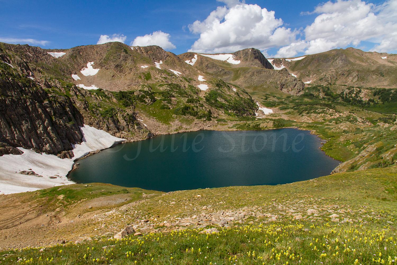 Wildflowers along King Lake, Image # 0721