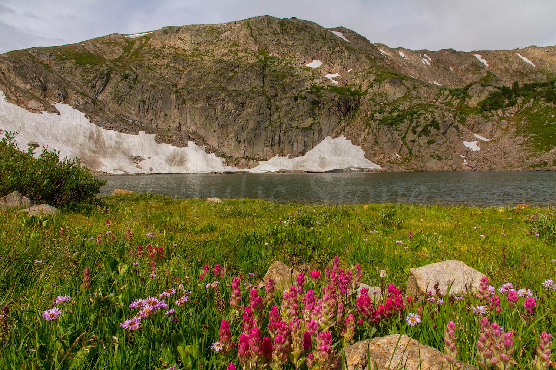 King Lake, Image # 9827