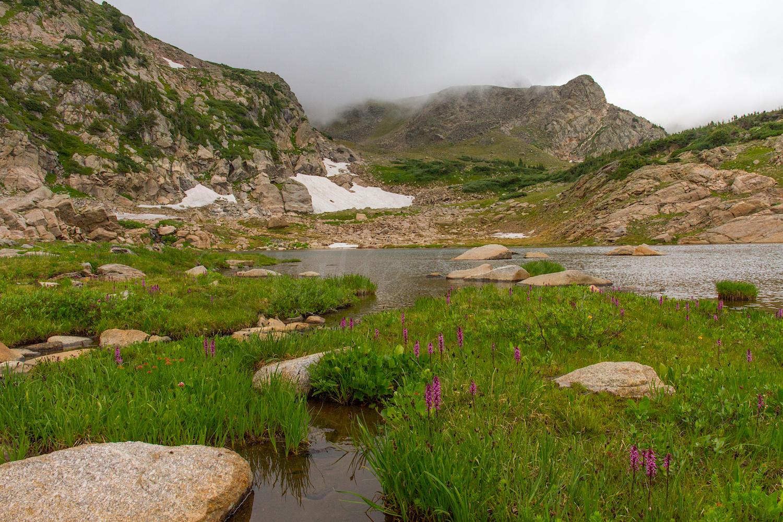 Pond near King Lake, Image # 9973