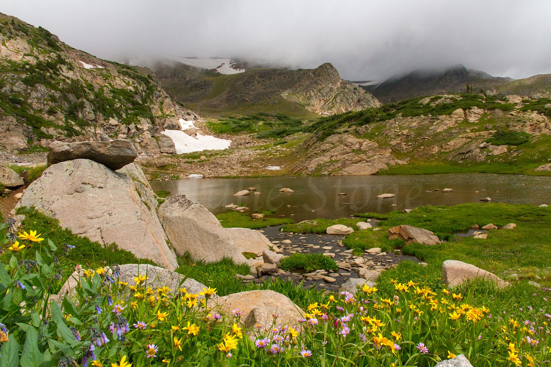 Pond near King Lake, Image # 9943